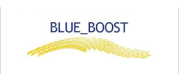 Logo BLUE_BOOST